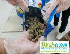 """台湾警方查获""""贵族毒品"""" 市值超4000万新台币"""