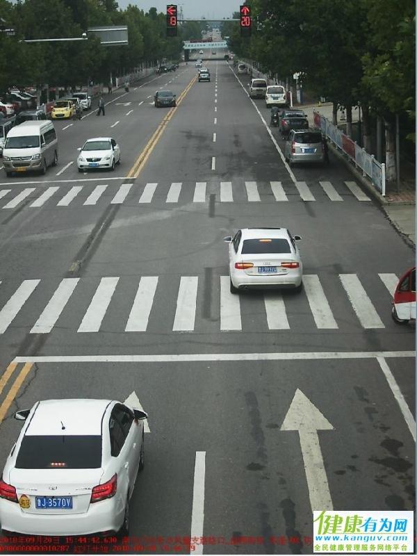 机动车交通违法曝光台,看看今日曝光的违法行为