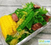 减肥期间,有哪些食物可以代替米饭?