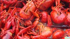 又麻又辣,肉质劲道,鲜香四溢的麻辣小龙虾,实在是太好吃了